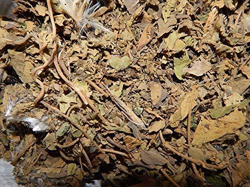 FERRY Bio-Saatgut Nicht nur Pflanzen: Gurmar Gymnema Sylvester Gurmarbooti, gurmari, gudma, Kuh, Österreichische 200G