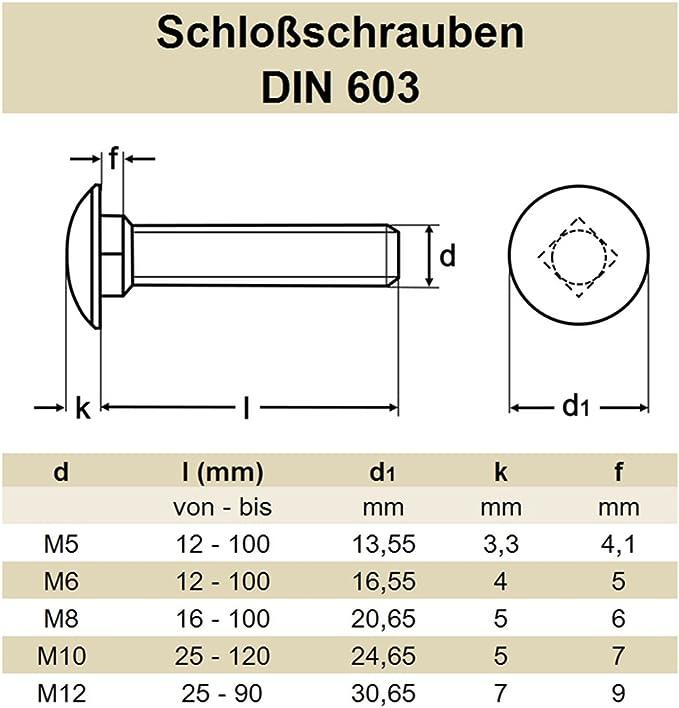 rostfrei | Flachrundkopfschrauben DERING Schlossschrauben M5x50//50 DIN 603 Edelstahl A2 10 St/ück Flachrund-Schrauben