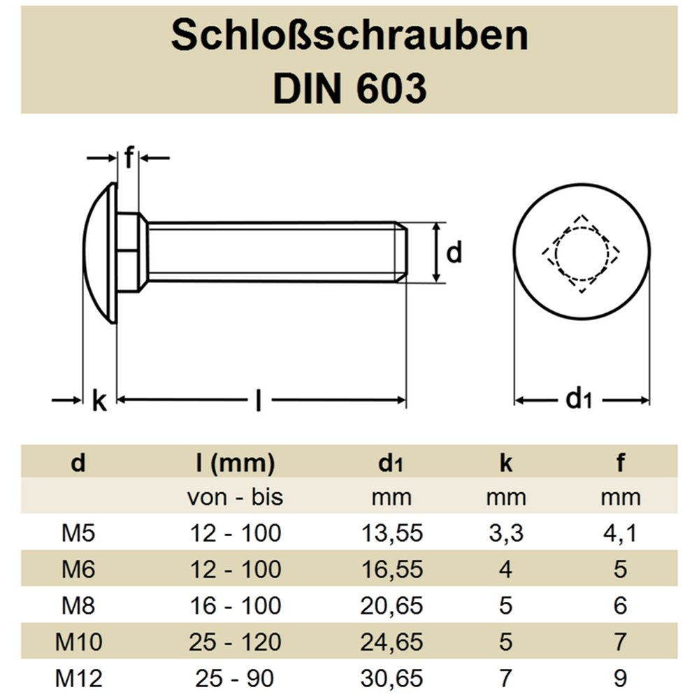 | Flachrundkopfschrauben DERING Schlossschrauben M8x16//16 DIN 603 Edelstahl A2 rostfrei Flachrund-Schrauben 30 St/ück
