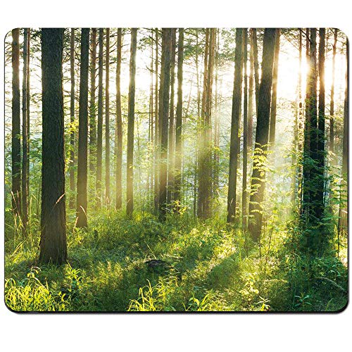 AEUTEXT Nature Gaming Mouse Pad Rectangle Stitched Edges Forest Non-Slip Rubber Base Premium-Textured Waterproof Mousepad Office for Gamer Computer Laptop Desktop 9.5 X 7.9 inch (Sunlight Forest)