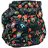Product Image of the Smart Bottoms Smart 1 AIO Cloth Diaper (Enchanted)