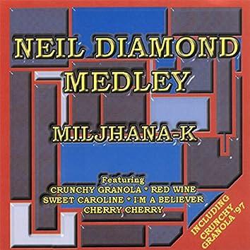 Neil Diamond Medley Megamix