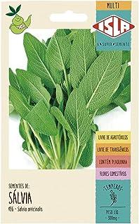 Sálvia - 300mg / 120 sementes por grama