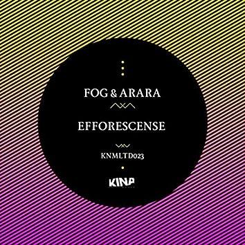 Efforescence