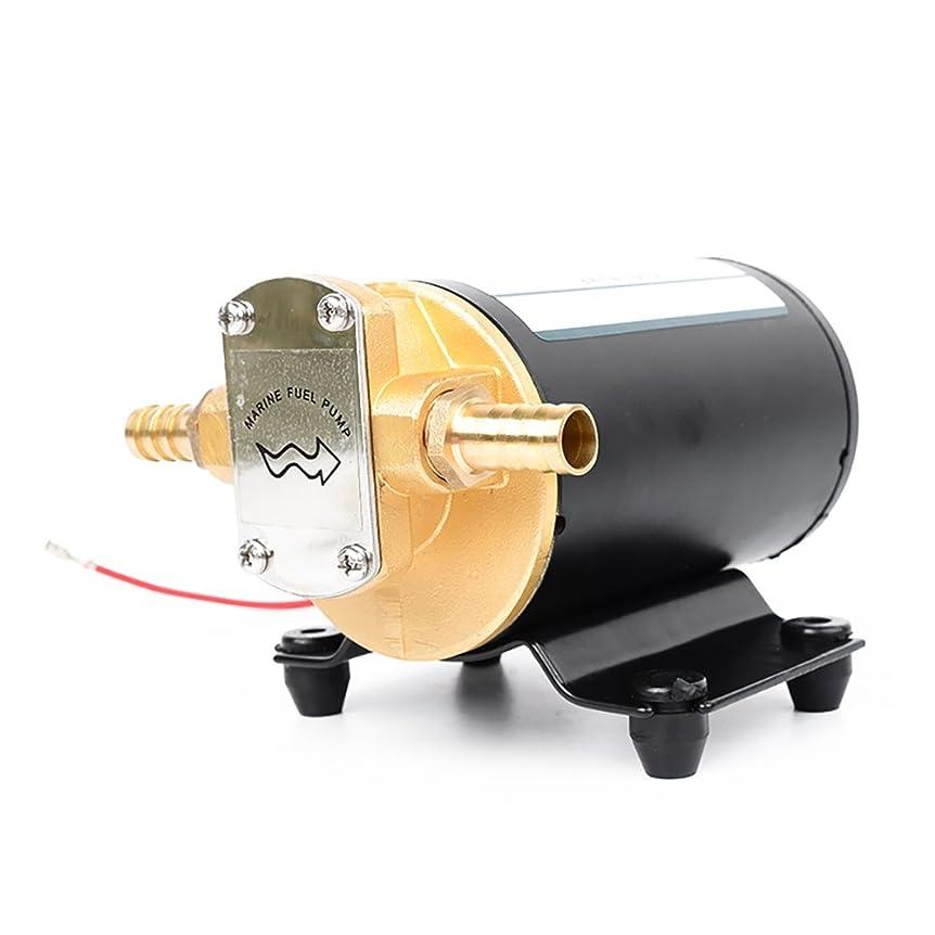 むき出し恵み家族iFormosa 24V 12L/min 銅金属製 ギア 軽油 灯油 オイル 潤滑油 粘度液体 給油 自吸可能 ポンプ 直流 IF-FP24
