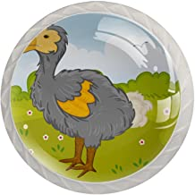 AITAI Dodo vogel in park ronde kast knop 4 pak trekt handgrepen