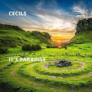 It's Paradise