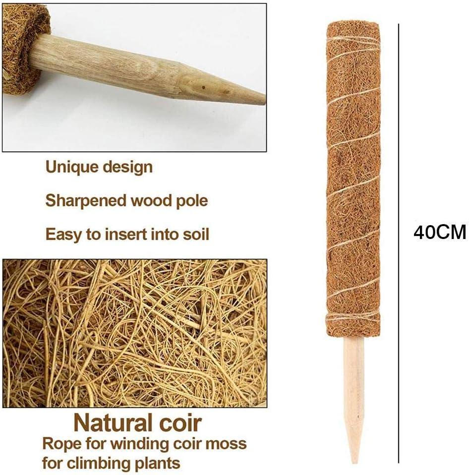 Poteau de mousse de totem de b/âton de mousse de coco 40CM poteaux de coco de coco pour les plantes dint/érieur grimpantes dextension de support de plante grimpantes b/âtons de support de plante