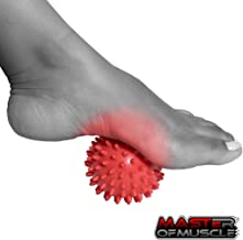 muscle ball roller by Master of Muscle