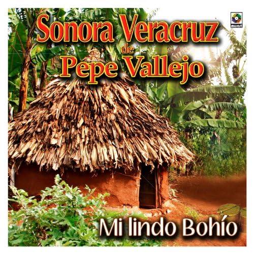Sonora Veracruz De Pepe Vallejo