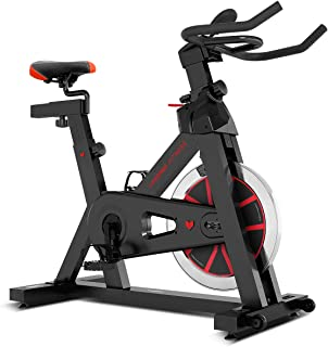 Lifespan Fitness SP-310 (M2) Spin Bike Exercise Bike Indoor Cycle Machine