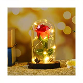 Autoday USB Beauty and The Beast Preserved Fresh Rose Flower Light Fallen Petals in a Glass Romantic Wooden Base Valentine's Day Birthday Anniversary (447