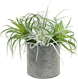Koyal Wholesale Artificial Air Plants Pack of 4, Assorted Colors Variety, 10-Inch Medium Large Bulk Faux Tillandsia Sprays...
