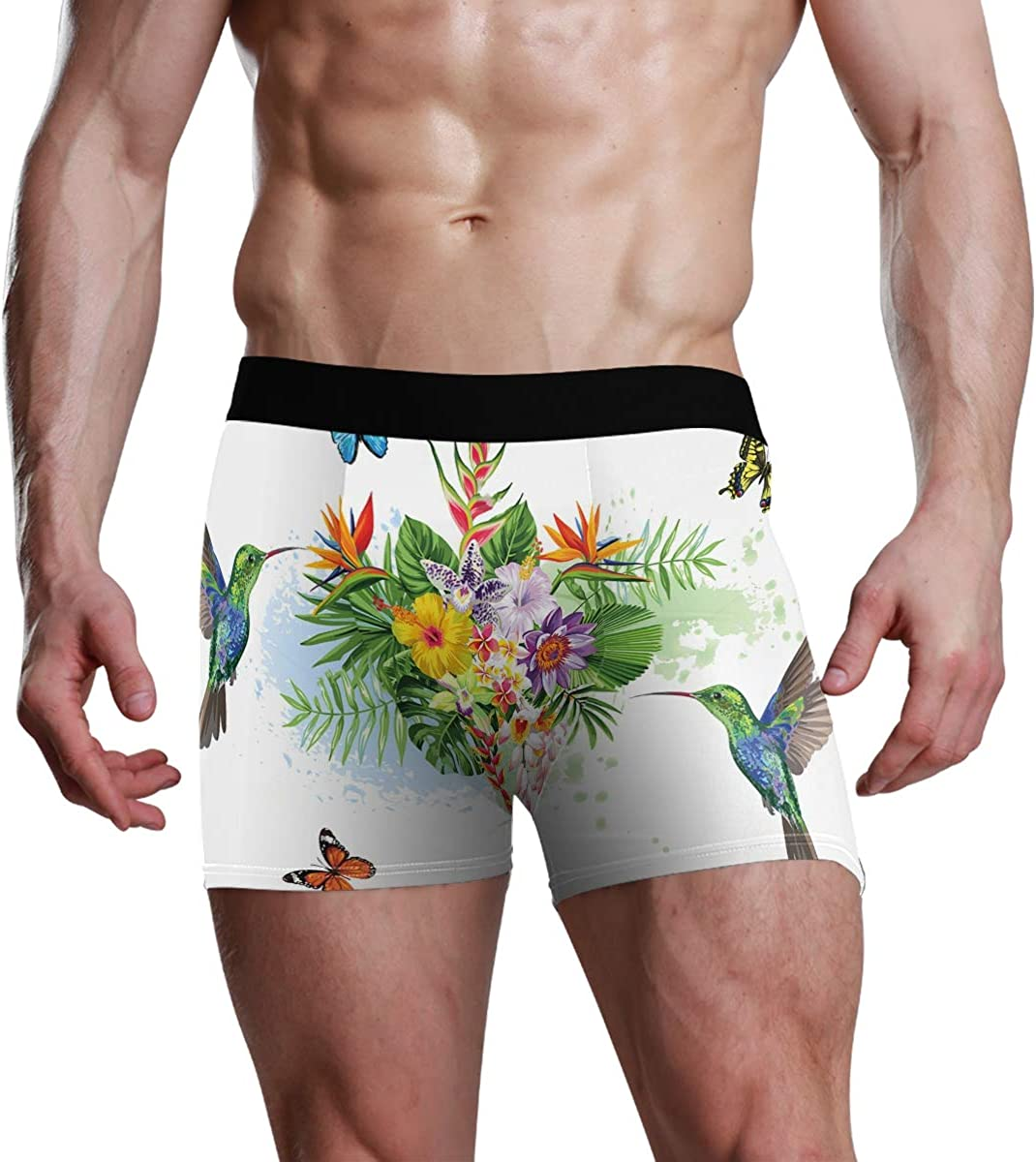 Mens Boxer Briefs Hummingbird and Butterfly Low Rise Trunks Underwear Breathable Bikini Boys