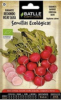 Semillas Ecológicas Hortícolas - Rabanito redondo rojo