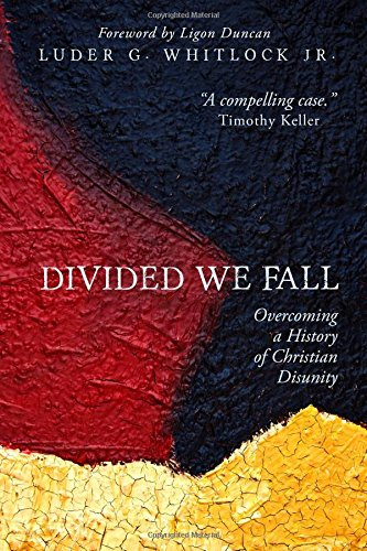 Image of Divided We Fall: Overcoming a History of Christian Disunity