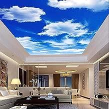 FSLUCKY Blue Sky Clouds Ceiling Wallpaper Wall Murals 3D Photo of Wall Paper Rolls Art Decoration Wallpaper for Living Room Ceiling Decoration-D