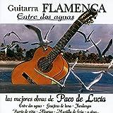Guajiras De La Luna (Flamenco Guitar Version)