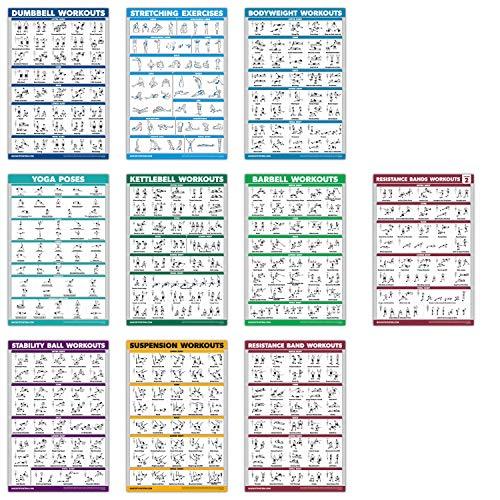 "QuickFit Übungsposter-Set - Widerstandsbänder Volumen 1 & 2, Hantel, Suspension, Kettlebell, Stretching, Körpergewicht, Langhantel, Yoga-Posen, Gymnastikball, Laminated, 18\"" x 27\"""