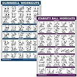 QuickFit Kurzhanteltraining und Übungsball Poster-Set – laminiertes 2 Diagramm-Set –...