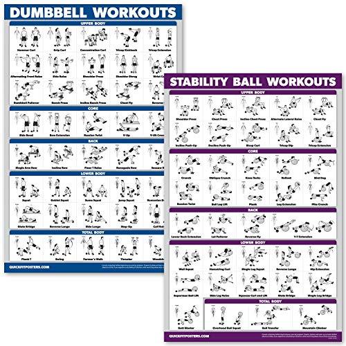 QuickFit Kurzhanteltraining und Übungsball Poster-Set – laminiertes 2 Diagramm-Set – Kurzhantelübung & Stabilität/Yoga-Ball Workouts, LAMINATED, 18
