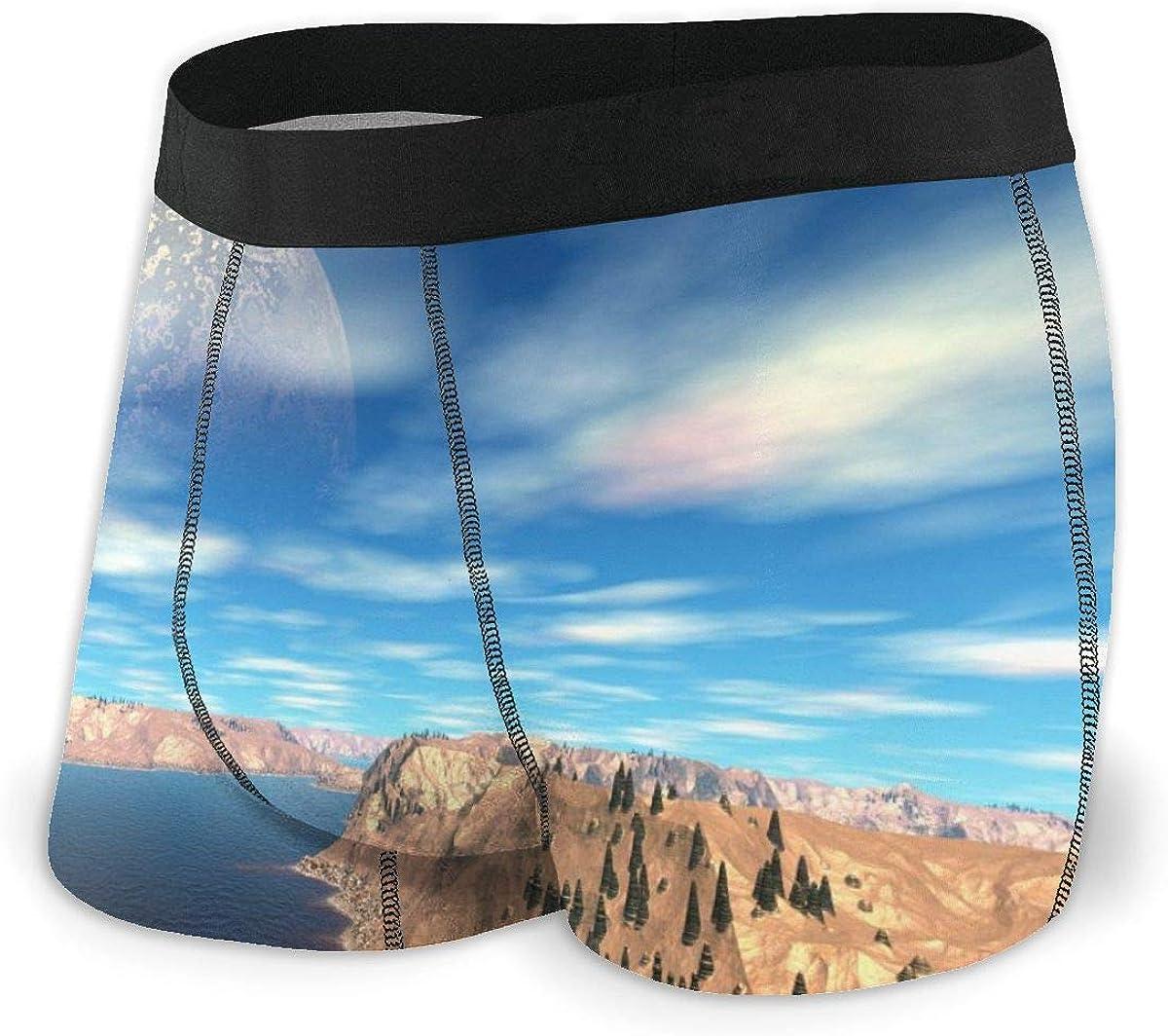 Randolph Wordsworth Mens Boxer Briefs Fantasy Alien Planet Boys Trunks Underwear Short Leg Breathable Man