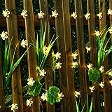 SKYFIRE Led Flower Fairy Lights,22ft 50 Led Blossom Solar Fairy Lights Solar Flower String Lights for Outdoor,Garden, Patio(Warm White)