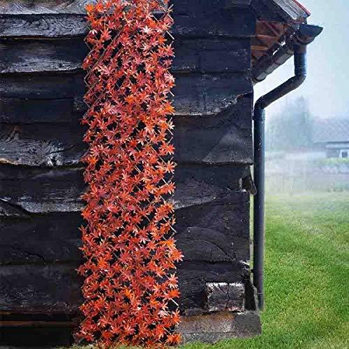 garden mile® Divers Treillis topiaire Vert et Rouge Feuilles artificielles Printemps et été Rampant décoration de Jardin Artificielle Plantes de Lierre grimpantes 180 x 90cm Red Acer Leaf