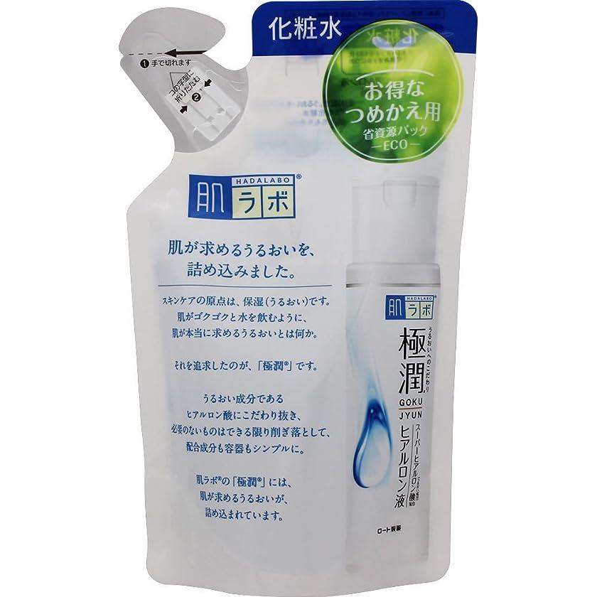 提案するゴールド浸透する肌ラボ 極潤 ヒアルロン酸 化粧水 ヒアルロン酸3種配合 詰替用 170ml