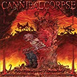 : Cannibal Corpse - Centuries of Torment: The First 20 Years [3 DVDs] (DVD (Standard Version))