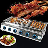 CNCEST 6 Burners Gas BBQ Grill-Stainless Steel Barbecue Cooker 31''X10'' for outdoor Camping BBQ Tabletop Cooker 2800PA