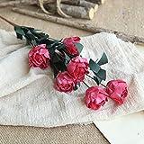 KItipeng Fleurs Artificielles,Fausse Fleur, 1 Bouquet 6 têtes Feuilles de Fleur de Pivoine en Soie Artificielle Home Décor de fête de Mariage,Mariée Bouquet,DIY Maison Arrangement de Fleur