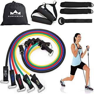 DUMSAMKER Resistance Bands Set -【2019 Upgraded】 Exercise Bands with Handles, Ankle Straps, Door Anchor and Guide Book - for Men Women Home Workouts and Resistance Training - 100% Life Time Guarantee