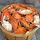 Female Maryland Steamed Blue Crabs are a mix of small and medium crabs. Our crabs are 100% authentic Maryland Blue Crabs caught daily and delivered the same day from the Chesapeake Bay in Maryland. Small-medium crabs: Sweeter tasting meat and may con...