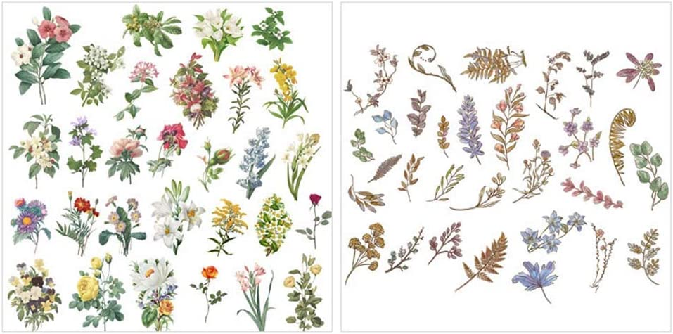 for Personalize,Phone,Laptops,Scrapbook,Luggage,Diary Decoration Vintage Flowers and Plants Stickers style 2 120 pcs Peel-Off DIY Decoration Sulfuric Paper Flowers and Plants Scrapbook Stickers