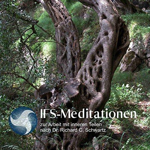 IFS-Meditationen zur Arbeit mit inneren Teilen nach Dr. Richard C. Schwartz cover art