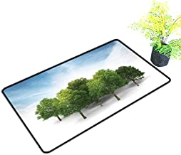 gmnalahome Extra Thick Door Mat d of Grove Isolated on White with Blue Sky and Clouds Background Soak Up Water and Dirt W17 x H13 INCH