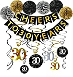 Famoby 30th Birthday Party Decorations Kit - Cheers to 30 Years Banner, Poms,Sparkling Celebration 30 Hanging Swirls for 30 Years Old Party Supplies 30th Birthday Decorations