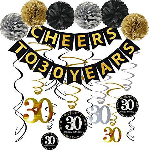 30th Birthday Party Decorations Kit - Cheers to 30 Years Banner, Poms,Sparkling Celebration 30 Hanging Swirls for 30 Years Old Party Supplies 30th Birthday Decorations