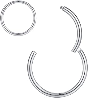 ORANGELOVE Hypoallergenic Nose Rings 20G 18G 16G 14G 12G 10G 8G 316l Surgical Steel Piercing Jewelry Hinged Segment Ring Body Piercing Nose Hoop Lip Rings Nose Helix Cartilage Rook Earrings