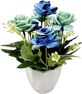 Best plastic roses in bulk Reviews