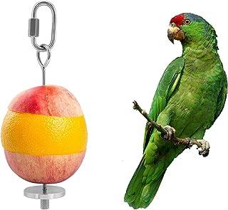 YIQUAN Bird Food Holder, Bird Feeders, Stainless Steel Parrot Fruit Vegetable Stick Holder, Foraging Toy, Bird Treat Skewe...