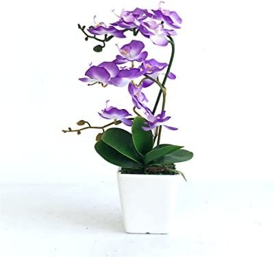 NOHOPE Multi-Style Moth Orchid Simulation Flower With Ceramic Vase Home Decor Artifical Flower Ornament