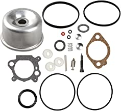 Best briggs and stratton carb rebuild kit Reviews