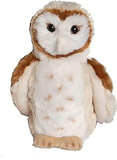 Rafter Barn Owl 7