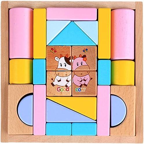 Hbwz Bloques de Madera de Colors Eucalyptus Puzzle Enlightenment Suit Buenas Herramientas educativas para Niños adecuados para Niños Mayores de 3 años