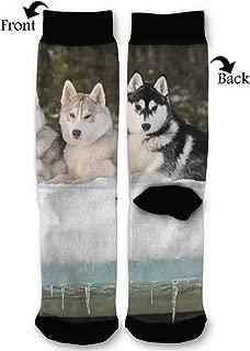 Fashion Travel Breathable Socks Sled Dog Siberian Husky Alaskan Malamute Men & Women Running Casual Socks