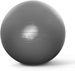 HiDear Exercise Yoga Ball, Balance Ball with Quick Pump 65cm/ 75cm Anti-Slip Yoga Ball Heavy Duty Gym Ball for Physical Th...