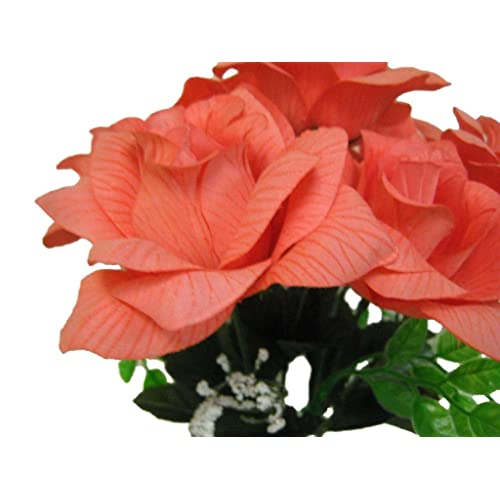 Coral Color Flowers Amazon