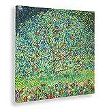 Giallobus - Cuadro - Gustav Klimt - Manzano I -Estampado en Lienzo - Listo para Colgar - Varios tamaños - 50x50 cm